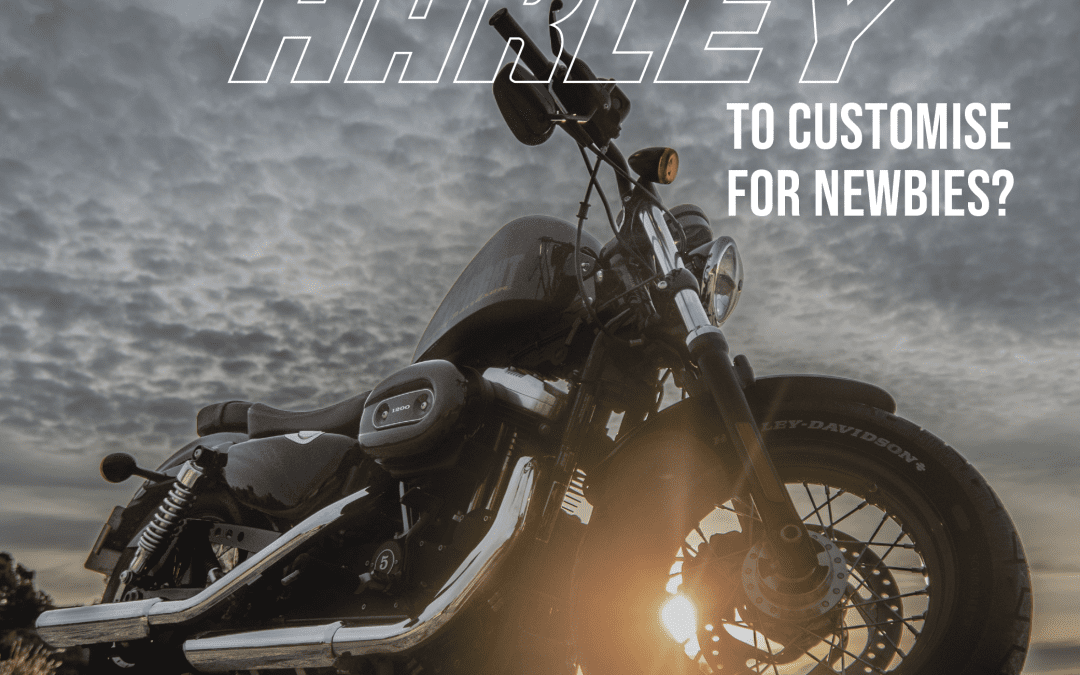 What is the best Harley?